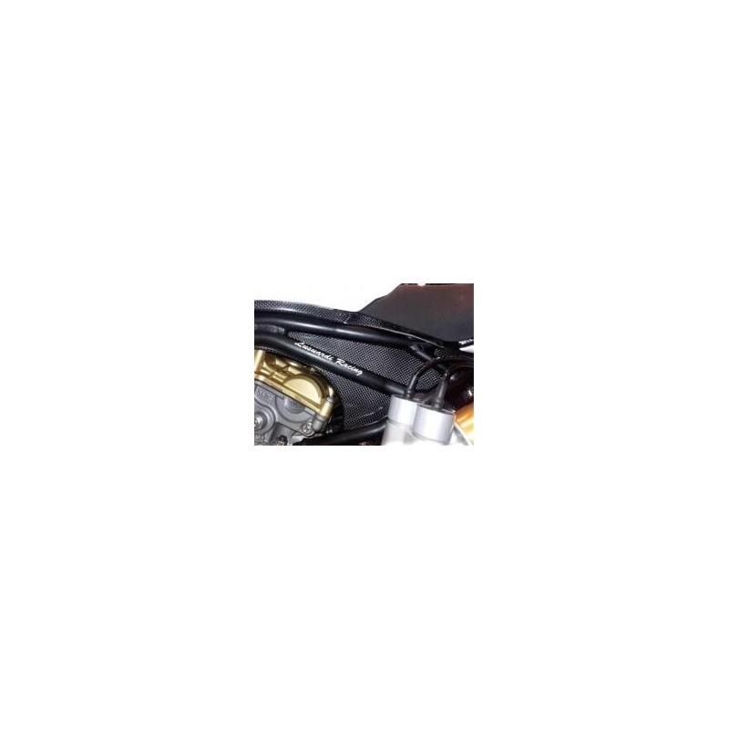 Telaietto posteriore in alluminio + pozzetto carbonio/cover pompa benzina